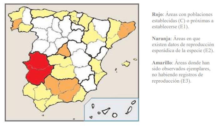 Distribución España ganso del Nilo